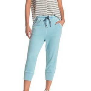 NWT Free People Counterpunch Cropped Jogger Pants
